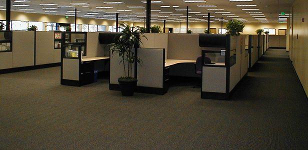 Commercial Office Carpet Cleaner In Boca Raton